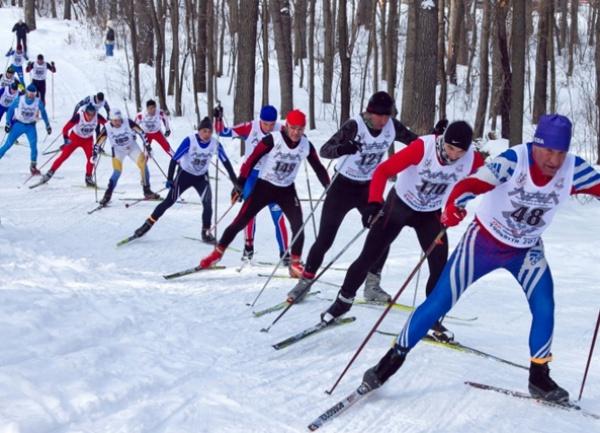 лыжные гонки скачать торрент